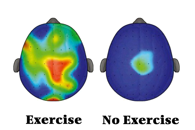 exercise-the-brain