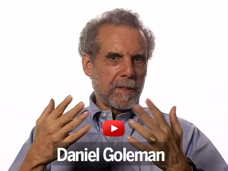 Daniel Goleman Connects Emotional and Ecological Intelligence